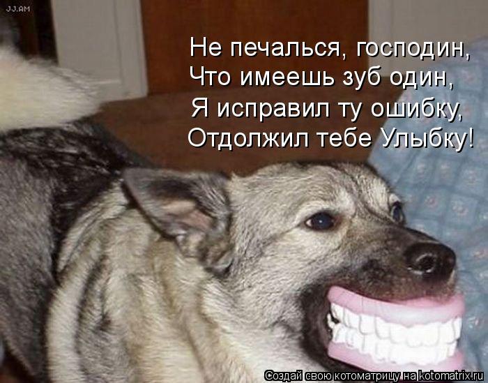 Котоматрица: Не печалься, господин, Что имеешь зуб один, Я исправил ту ошибку, Отдолжил тебе Улыбку!