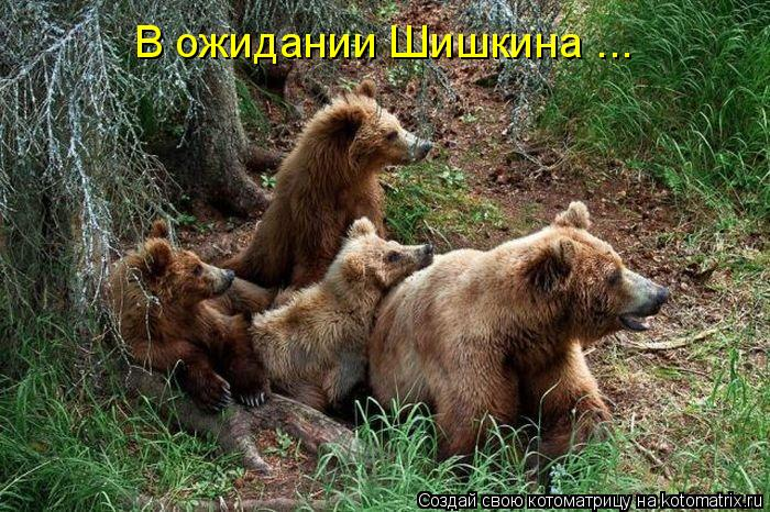 В ожидании Шишкина ...