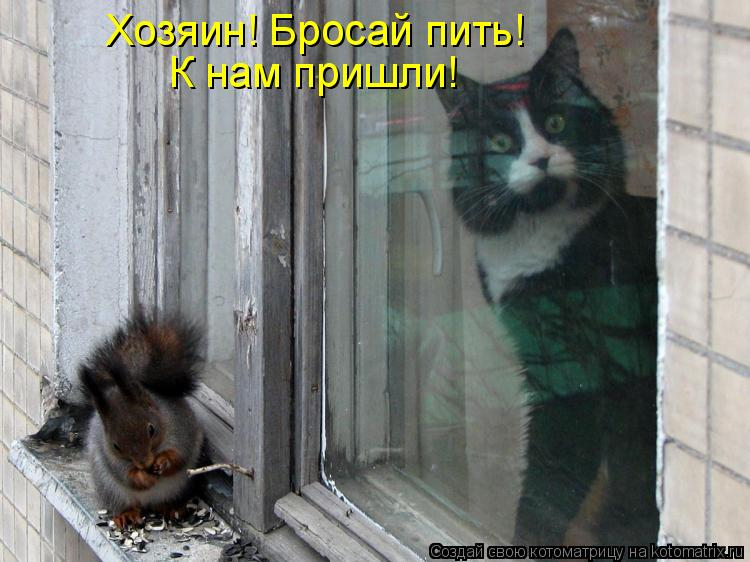 http://kotomatrix.ru/images/lolz/2010/07/27/639225.jpg