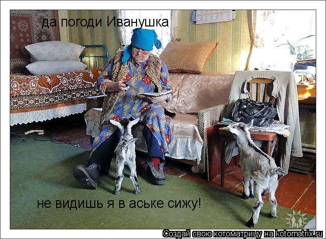 Котоматрица: да погоди Иванушка не видишь я в аське сижу!