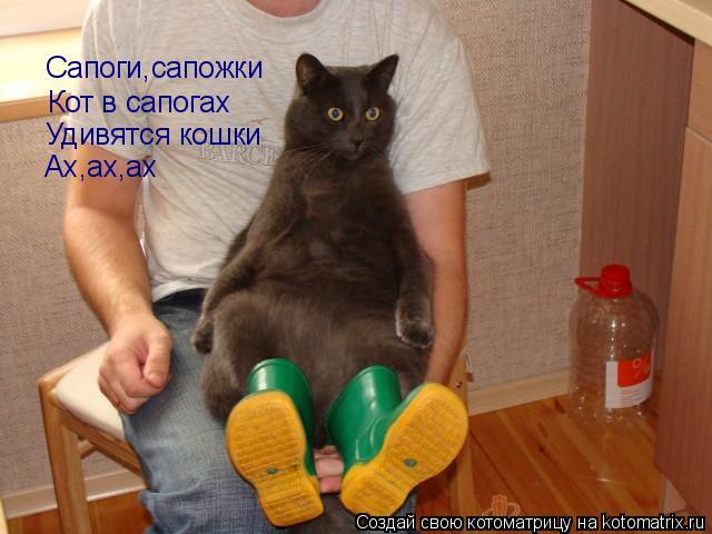 http://kotomatrix.ru/images/lolz/2010/07/27/639652.jpg