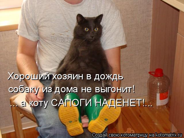Хороший хозяин в дождь собаку из дома не выгонит! ... а коту САПОГИНА