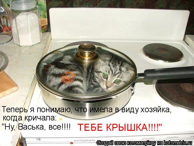 """Котоматрица: Теперь я понимаю, что имела в виду хозяйка, когда кричала: """"Ну, Васька, все!!!!   ТЕБЕ КРЫШКА!!!!"""""""
