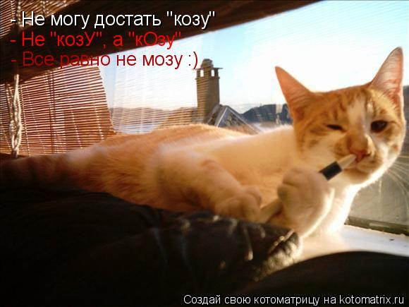"""- Не могу достать """"козу"""" - Не """"козУ"""", а """"кОзу"""" - Все равно не мозу :)"""