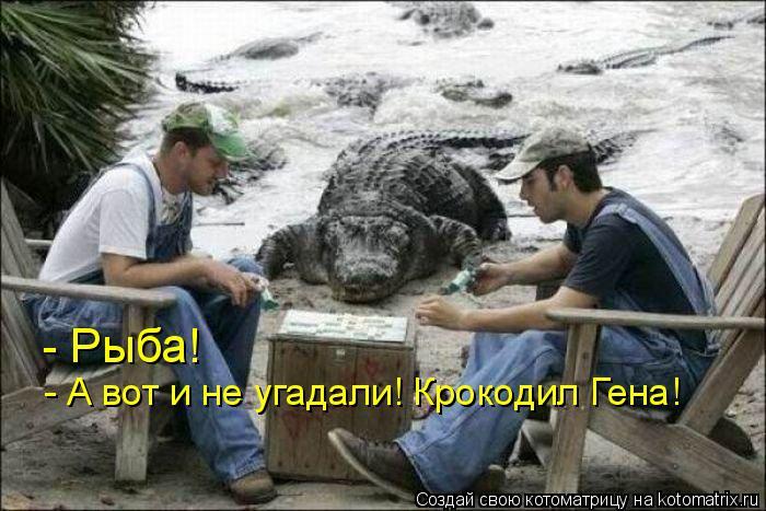 Котоматрица: - Рыба! - А вот и не угадали! Крокодил Гена!