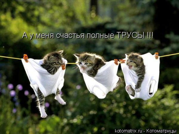 А уменя счастья полные ТРУСЫ !!!