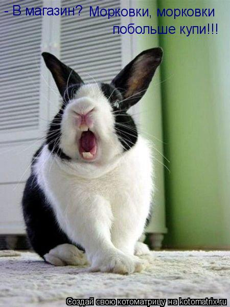 Котоматрица: - В магазин? Морковки, морковки  побольше купи!!!