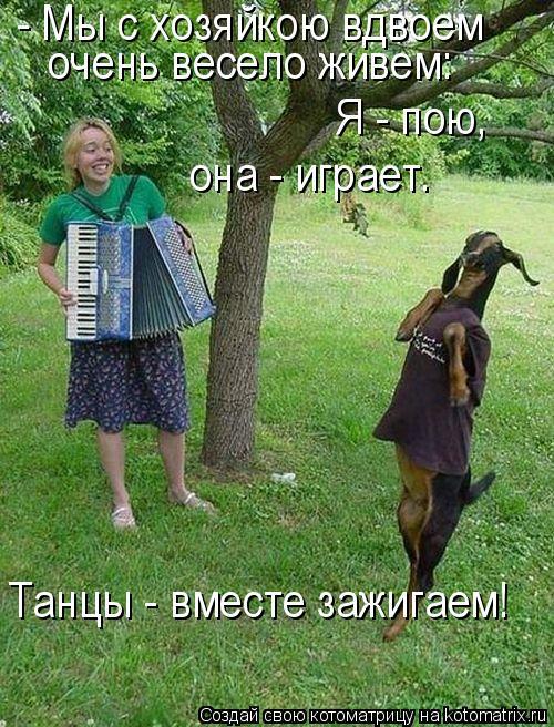 Котоматрица: - Мы с хозяйкою вдвоем очень весело живем: Я - пою,  она - играет. Танцы - вместе зажигаем!