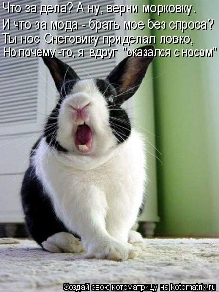 """Котоматрица: И что за мода - брать мое без спроса? Что за дела? А ну, верни морковку. Но почему -то, я  вдруг  """"оказался с носом"""" Ты нос Снеговику приделал ловк"""