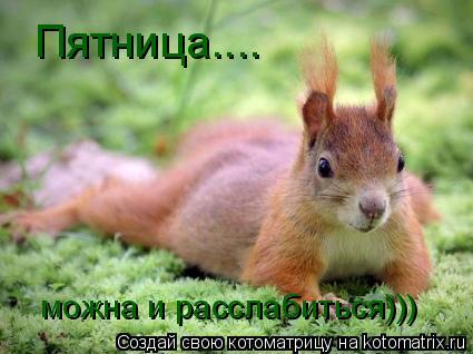 Котоматрица: Пятница.... можна и расслабиться)))