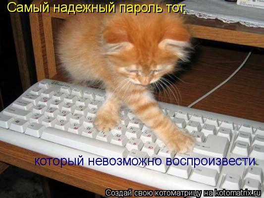 Котоматрица: Самый надежный пароль тот, который невозможно воспроизвести
