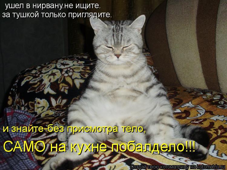 Котоматрица: ушел в нирвану.не ищите. за тушкой только приглядите. и знайте-без присмотра тело, САМО на кухне побалдело!!!