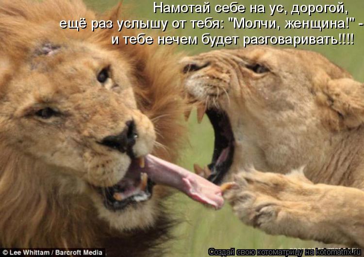 """Котоматрица: ещё раз услышу от тебя: """"Молчи, женщина!"""" -  и тебе нечем будет разговаривать!!!! Намотай себе на ус, дорогой,"""