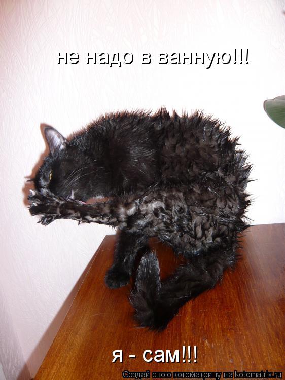 Котоматрица: не надо в ванную!!! я - сам!!!