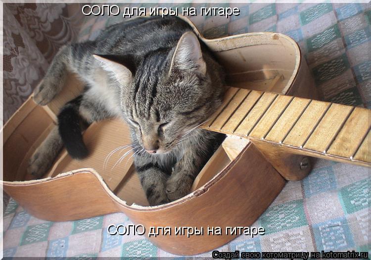 Котоматрица: СОЛО для игры на гитаре СОЛО для игры на гитаре