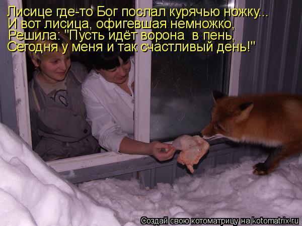 """Котоматрица: Лисице где-то Бог послал курячью ножку... И вот лисица, офигевшая немножко, Решила: """"Пусть идёт ворона  в пень, Сегодня у меня и так счастливый"""