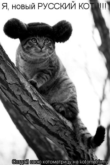 Котоматрица: Я, новый РУССКИЙ КОТ !!!!