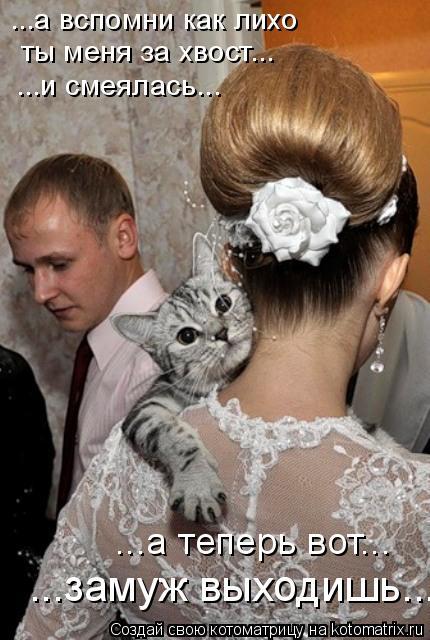 Котоматрица: ...а вспомни как лихо  ты меня за хвост... ...и смеялась... ...а теперь вот... ...замуж выходишь...