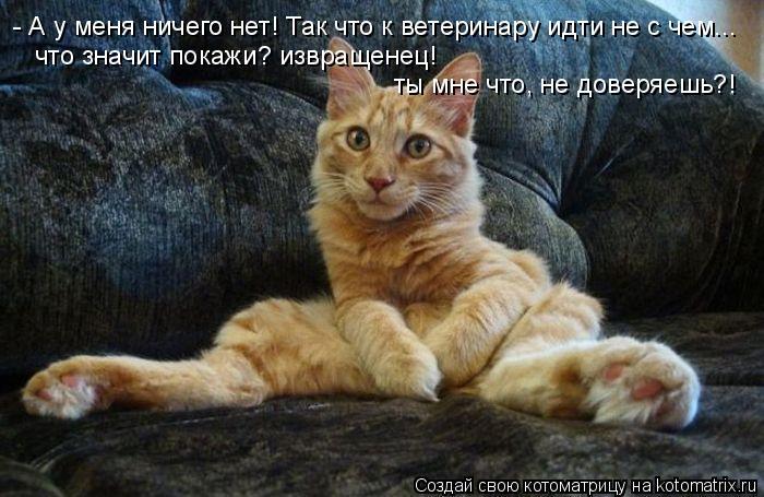 - А у меня ничего нет! Так что к ветеринару идти не с чем... что значи