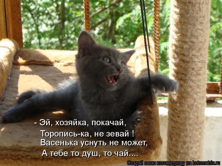 Котоматрица: - Эй, хозяйка, покачай, Торопись-ка, не зевай ! Васенька уснуть не может, А тебе то душ, то чай....