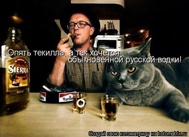 Котоматрица: обыкновенной русской водки!  Опять текилла, а так хочется