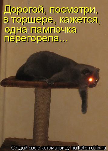 Дорогой, посмотри, в торшере, кажется, одна лампочка перегорела...
