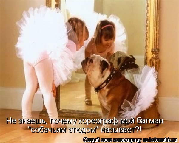 """Не знаешь, почему хореограф мой батман """"собачьим этюдом"""" называет?!"""