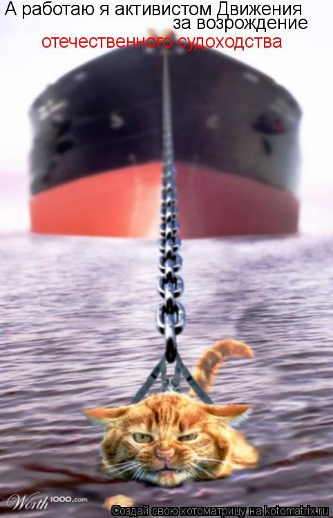 Котоматрица: А работаю я активистом Движения за возрождение  отечественного судоходства