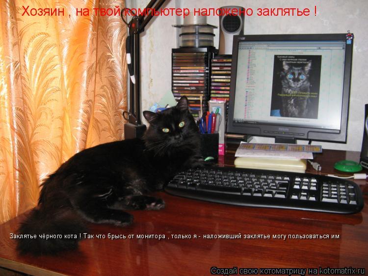 Котоматрица: Хозяин , на твой компьютер наложено заклятье ! Заклятье чёрного кота ! Так что брысь от монитора , только я - наложивший заклятье могу пользов