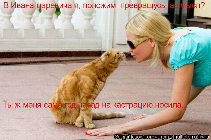 Котоматрица: В Ивана-царевича я, положим, превращусь, а смысл? Ты ж меня сама год назад на кастрацию носила...