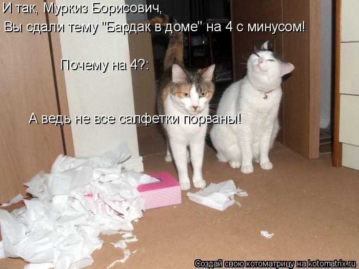 """Котоматрица: И так, Муркиз Борисович, Вы сдали тему """"Бардак в доме"""" на 4 с минусом! Почему на 4?: А ведь не все салфетки порваны!"""