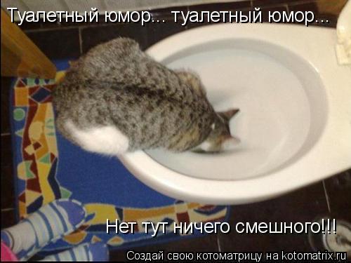 Котоматрица: Туалетный юмор... туалетный юмор... Нет тут ничего смешного!!!