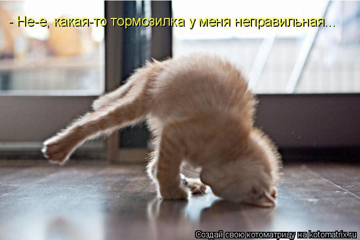 http://kotomatrix.ru/images/lolz/2010/08/09/649442.jpg