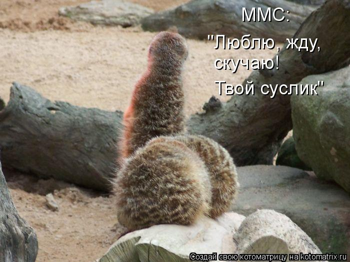 ммс картинки: