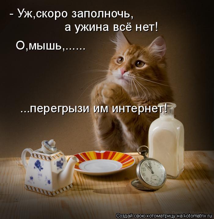 http://kotomatrix.ru/images/lolz/2010/08/10/649985.jpg