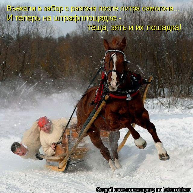 Русское теща и зять 20 фотография