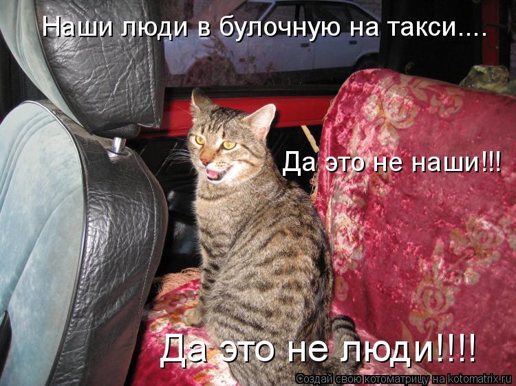 Котоматрица: Наши люди в булочную на такси....  Да это не наши!!!  Да это не люди!!!!