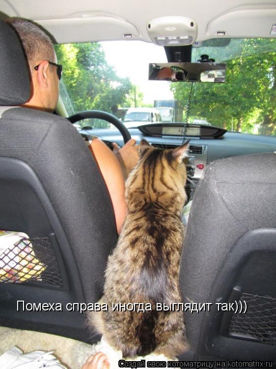 ������ ������ ������ �������� ���)))