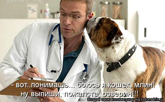 - вот..понимашь... боюсь я кошек, млин! ну выпиши, пожалста, озверин!!