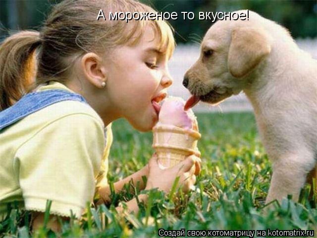 Котоматрица: А мороженое то вкусное!