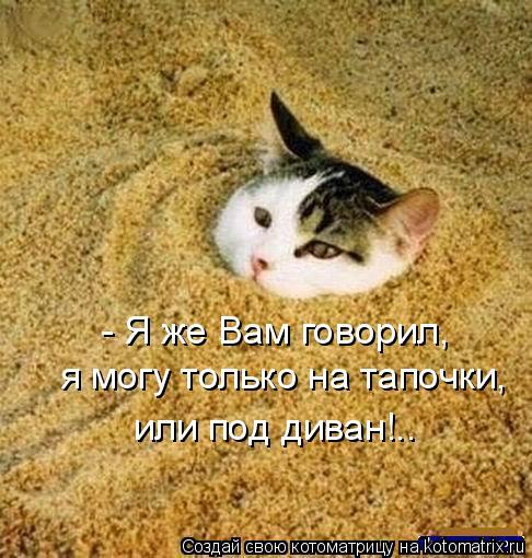 Котоматрица: - Я же Вам говорил,  я могу только на тапочки,  или под диван!..