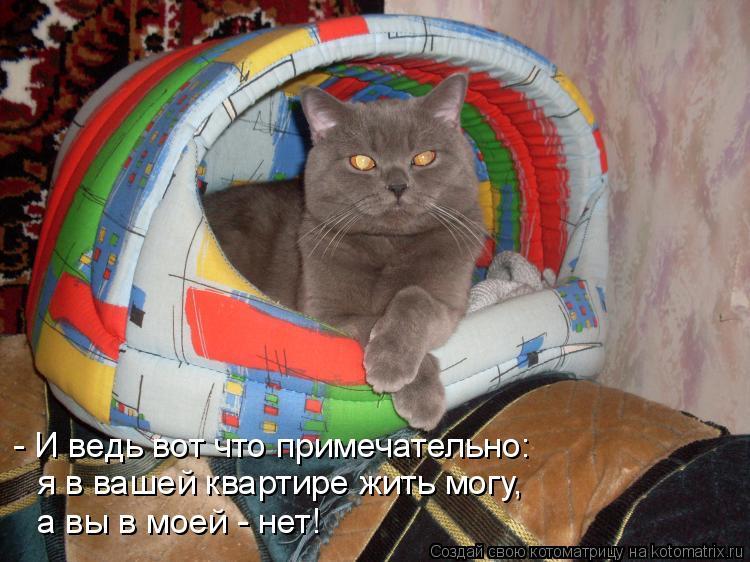 - И ведь вот что примечательно: я в вашей квартире жить могу, а вы в м