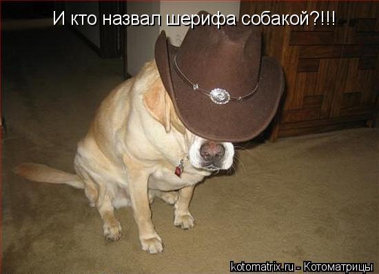Такие именины шляпу и пальто