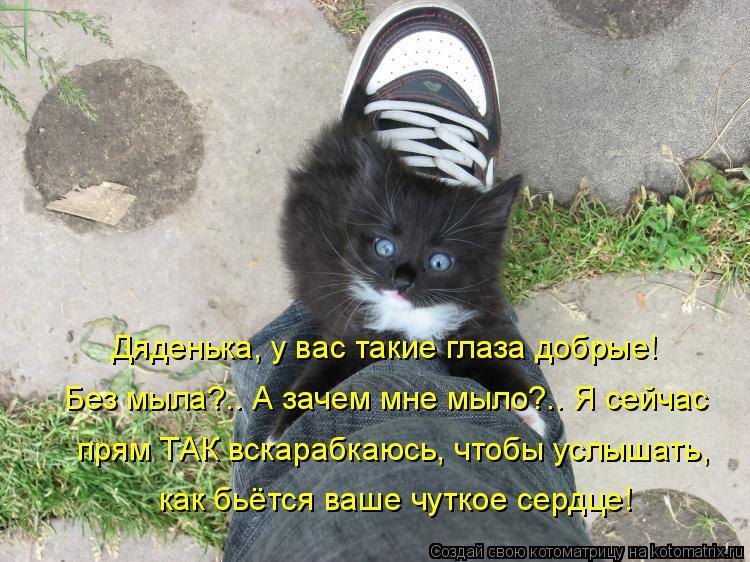 http://kotomatrix.ru/images/lolz/2010/08/13/652204.jpg