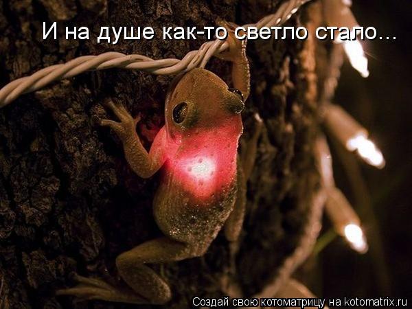 И на душе как-то светло стало...