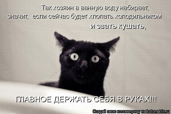 Котоматрица: Так хозяин в ванную воду набирает,  значит,  если сейчас будет хлопать холодильником  и звать кушать,  ГЛАВНОЕ ДЕРЖАТЬ СЕБЯ В РУКАХ!!!