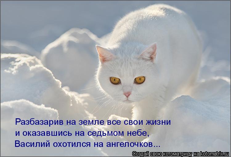 Василий охотился на ангелочков... Разбазарив на земле все свои жизни и