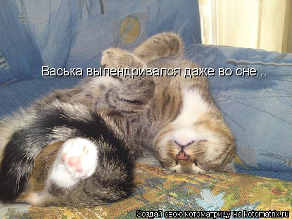 Васька выпендривался даже во сне...