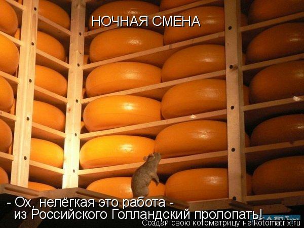 Котоматрица: НОЧНАЯ СМЕНА - Ох, нелёгкая это работа -  из Российского Голландский пролопать!