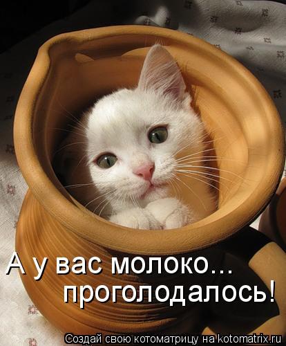 http://kotomatrix.ru/images/lolz/2010/08/18/656693.jpg